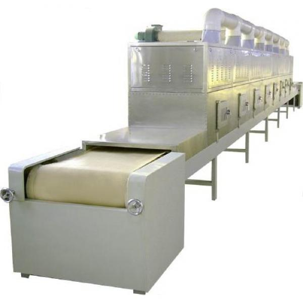 Continuous Multilayer Conveyor Mesh Belt Dryer