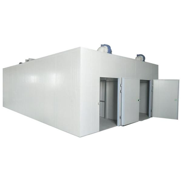 Electric Diesel Gas Vegetable Fruit Hot Air Drying Oven Equipment